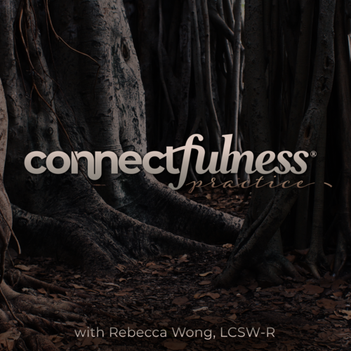 connectfulness_practice-cover-art